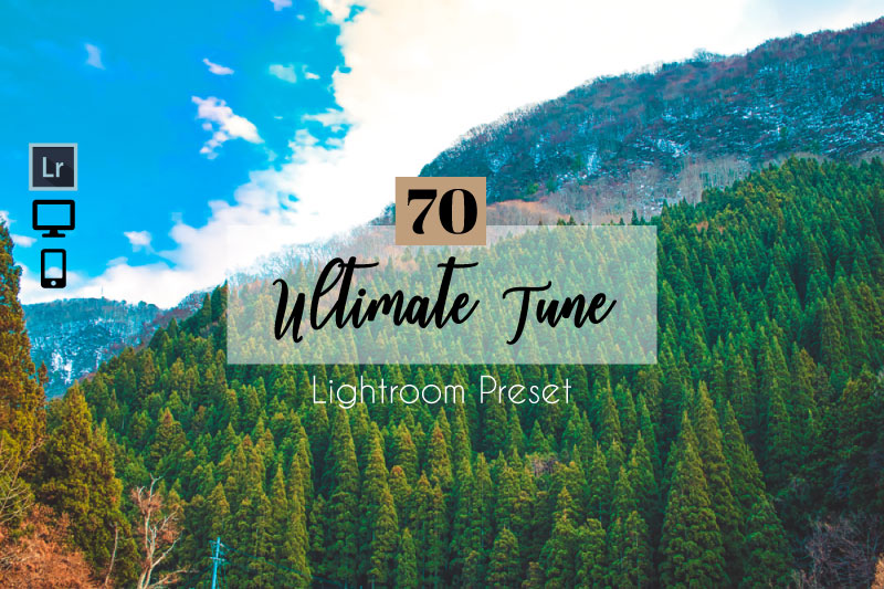 81 Ultimate Tune Lightroom Presets